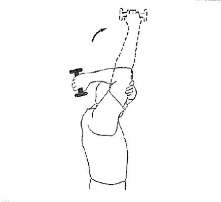 shoulder conditioning exercises  west idaho orthopedics
